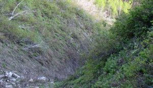 Επίδαυρος: Nεκρός ο αεροπτεριστής που κατέπεσε σε χαράδρα   Pagenews.gr
