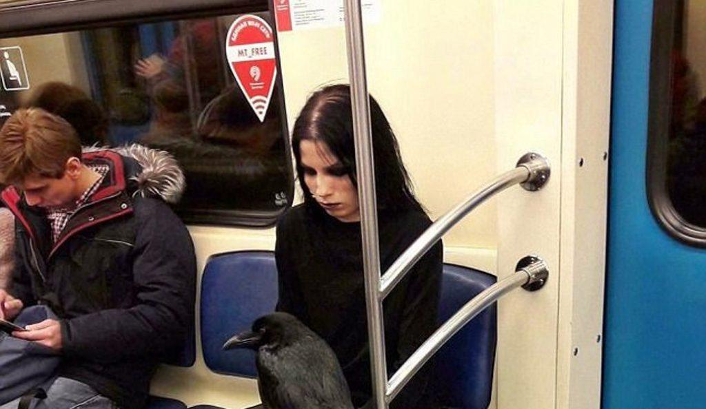 Viral: Γυναίκα μπήκε στο Μετρό της Μόσχας μαζί με το… κοράκι της (pic) | Pagenews.gr