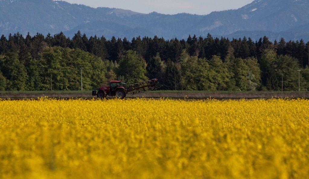 Μειώνεται το τίμημα ανταλλάγματος χρήσης εκτάσεων για γεωργική εκμετάλλευση σε δασικές περιοχές | Pagenews.gr