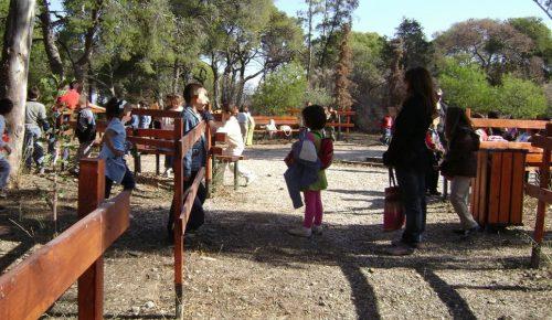 ΟΑΕΔ: Σε εξέλιξη οι αιτήσεις για τις παιδικές κατασκηνώσεις | Pagenews.gr