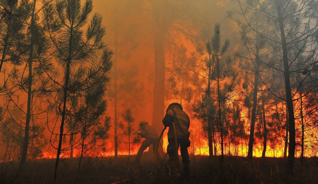 Τραγικός απολογισμός: 64 νεκροί και 157 τραυματίες από τη φωτιά στην Πορτογαλία | Pagenews.gr