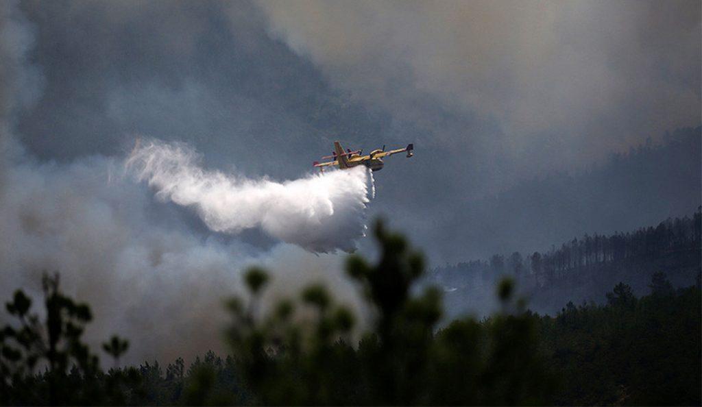 Πυρκαγιά στο παραποτάμιο δάσος του Νέστου | Pagenews.gr