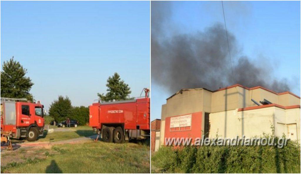 Πυρκαγιά σε εργοστάσιο στο Πλατύ Ημαθίας (pics) | Pagenews.gr