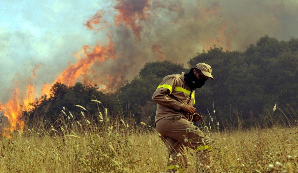 Πυρκαγιά στην περιοχή Υάμεια Μεσσηνίας   Pagenews.gr