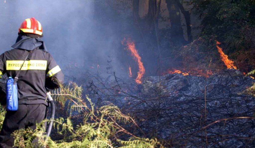 Υπό μερικό έλεγχο η φωτιά στην περιοχή Κούμανη της Ηλείας | Pagenews.gr