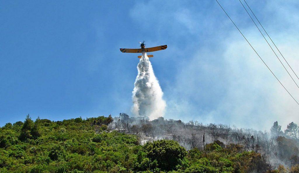 Πυρκαγιά στη Ζάκυνθο – Καίει δασική έκταση (pic) | Pagenews.gr