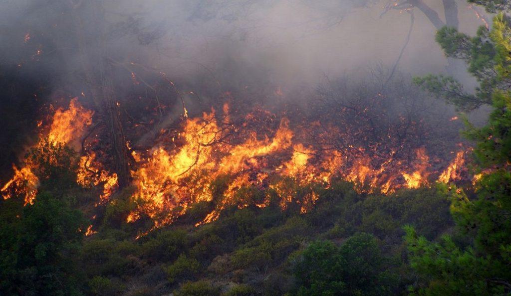 Φωτιά: Υψηλός και σήμερα ο κίνδυνος για πυρκαγιές | Pagenews.gr