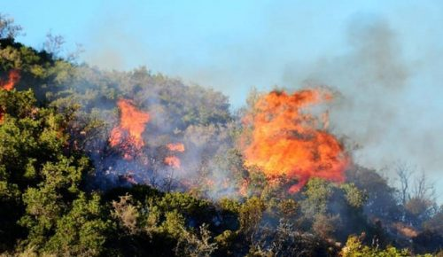 Πολύ υψηλός ο κίνδυνος πυρκαγιάς (χάρτης) | Pagenews.gr