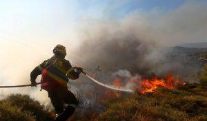 ΦΩΤΙΑ ΤΩΡΑ: Υπό έλεγχο η φωτιά στην Κερατέα | Pagenews.gr