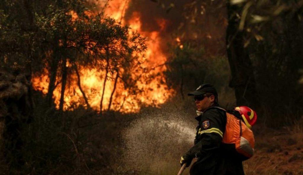 Φωτιά τώρα στο Λασίθι | Pagenews.gr