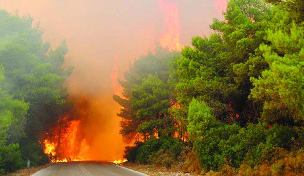 Σε εξέλιξη μεγάλη φωτιά στην Κύπρο | Pagenews.gr
