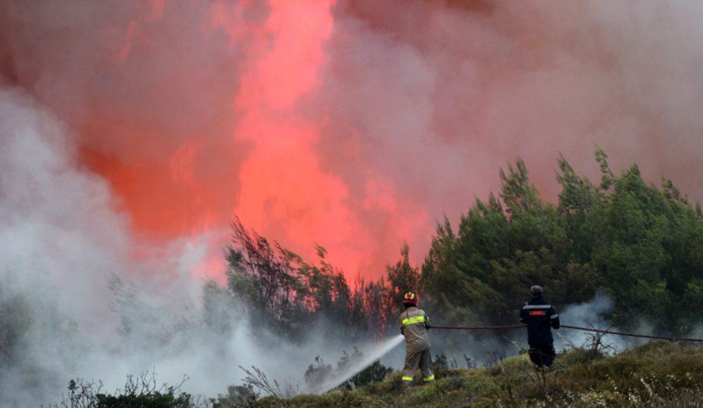 Φωτιά Ωρωπός: Σε εξέλιξη η καταγραφή των ζημιών στην περιοχή | Pagenews.gr