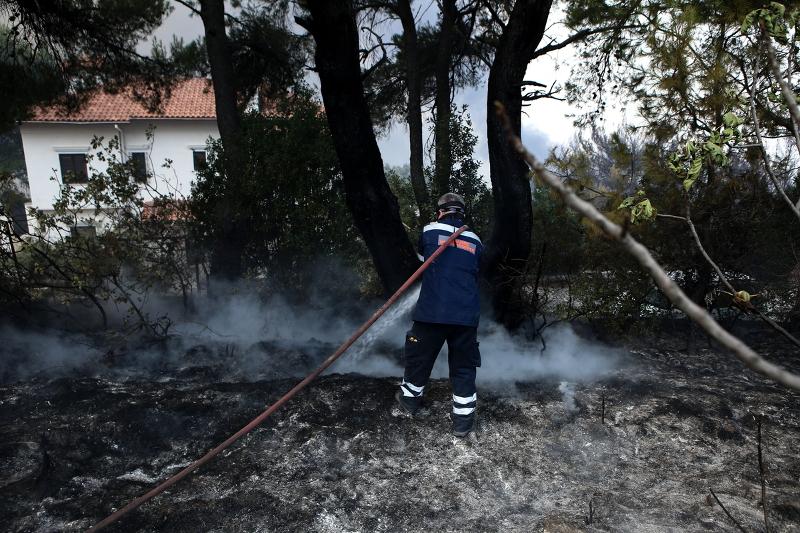 Ηλεία: Υπό μερικό έλεγχο η φωτιά που ξέσπασε στην περιοχή Κορυφή | Pagenews.gr