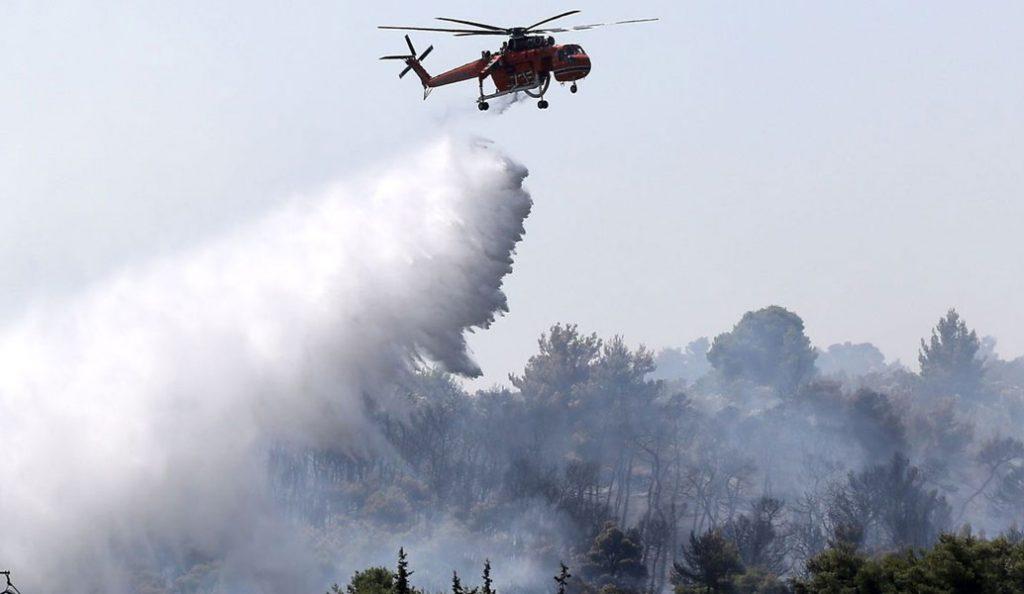 Φωτιά τώρα: Καίει πευκοδάσος στο Αγκίστρι (vid)   Pagenews.gr