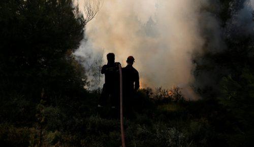Φωτιά τώρα Ζάκυνθος: Υπό μερικό έλεγχο η πυρκαγιά στο Καλαμάκι   Pagenews.gr