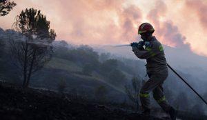 Περιφέρεια Ανατολής Αττικής: Σε πλήρη ετοιμότητα για την αντιμετώπιση δασικών πυρκαγιών | Pagenews.gr