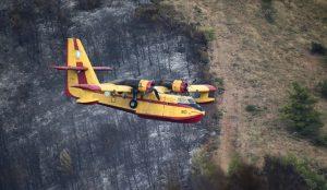 Υπουργείο Περιβάλλοντος – εγκύκλιος: Αναδασωτέες όλες οι εκτάσεις που κάηκαν από τις πυρκαγιές | Pagenews.gr