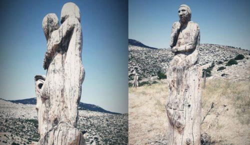 Μια βόλτα στη «σκοτεινή» πλευρά της Πάρνηθας | Pagenews.gr