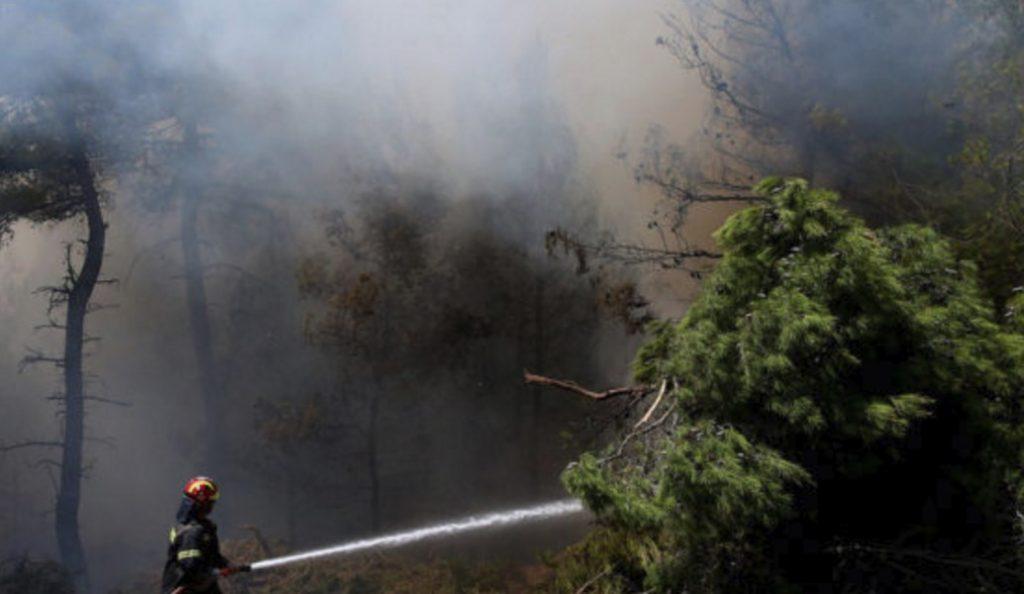 Πυρκαγιά στην περιοχή Αλφειούσα της Ηλείας | Pagenews.gr