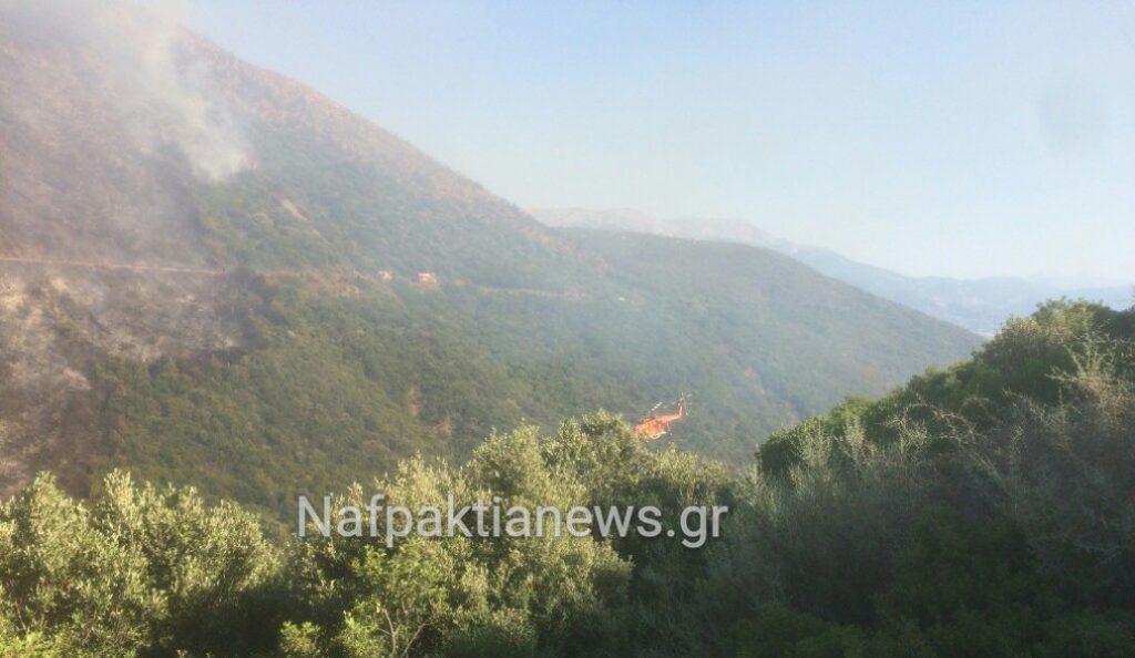 Πυρκαγιά στο Μολύκρειο Ναυπακτίας (vid) | Pagenews.gr
