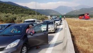 Μποτιλιάρισμα στην Εγνατία οδό εξαιτίας ενός σκύλου (pics) | Pagenews.gr