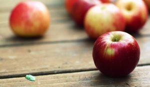 Φθινόπωρο: Οι πέντε τροφές της εποχής που βοηθούν το μεταβολισμό | Pagenews.gr