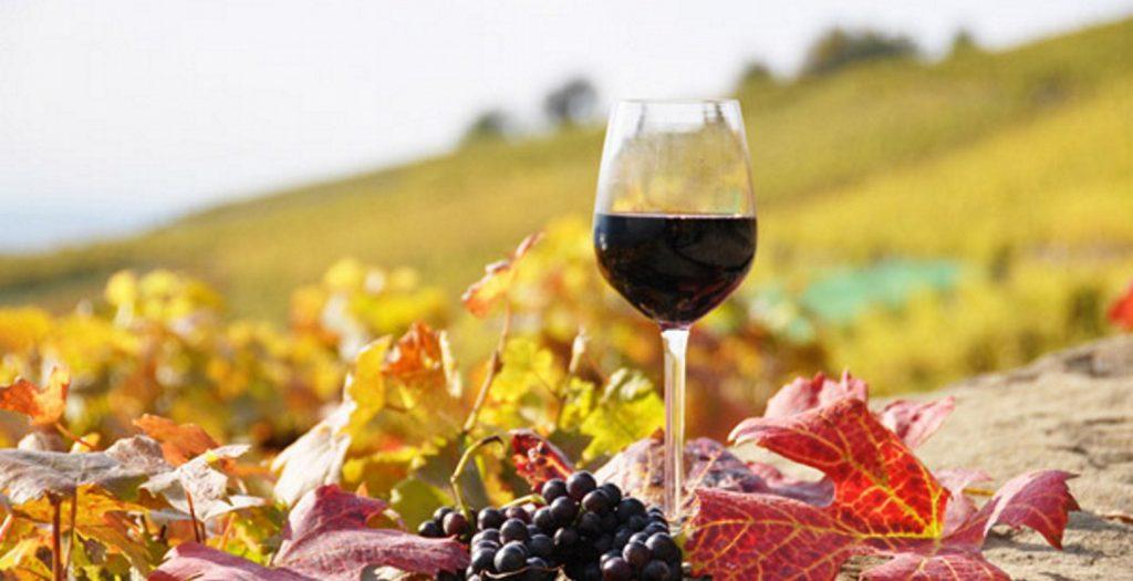 Επιλέξτε το κρασί που ταιριάζει με το φαγητό σας | Pagenews.gr