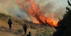 Μεγάλη φωτιά στη Βοιωτία | Pagenews.gr
