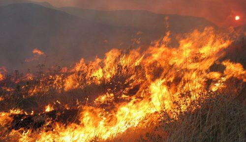 Πυρκαγιές Αττική: Το άρθρο της La Repubblica – Το Μάτι κινητοποίησε την καρδιά της Ευρώπης   Pagenews.gr