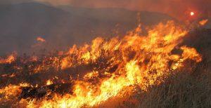 Ρόδος: Εκτός ελέγχου φωτιά στα νότια του νησιού   Pagenews.gr