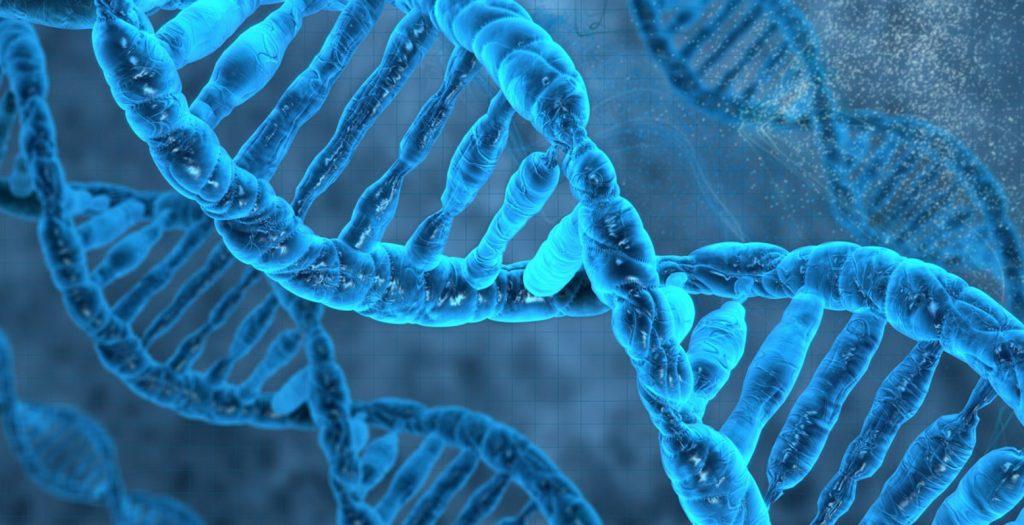 Γονιδιακή μετάλλαξη «κλειδί» για την αύξηση της διάρκειας ζωής των ανδρών | Pagenews.gr