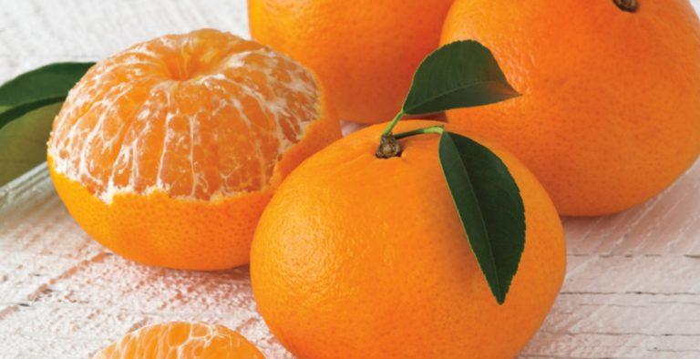 Οφέλη μανταρινιού: Το αγαπημένο χειμωνιάτικο φρούτο «θησαυρός» για την υγεία   Pagenews.gr