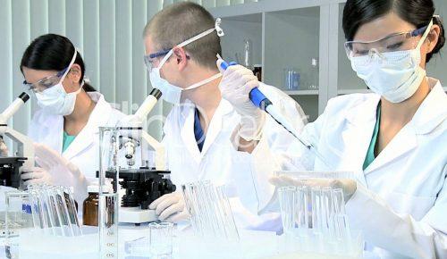Γονιδιακή θεραπεία θεράπευσε την παράλυση σε πειραματόζωα   Pagenews.gr