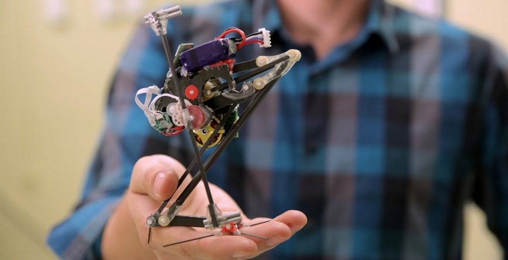 «Salto»: Ρομπότ… σαλταδόρος | Pagenews.gr