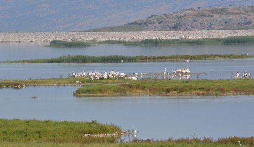 Εγκρίθηκε η ανάδειξη της διαδρομής προς τη λίμνη Κιθάρα στο Κτήμα Τατοΐου | Pagenews.gr