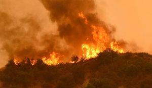Καλιφόρνια: Πυροσβέστης έχασε τη ζωή του στη μάχη με το πύρινο μέτωπο | Pagenews.gr