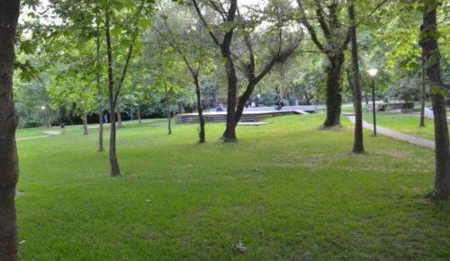 Περιφέρεια Αττικής: Συντήρηση των «πνευμόνων πρασίνου» – Ποιους χώρους αφορά | Pagenews.gr