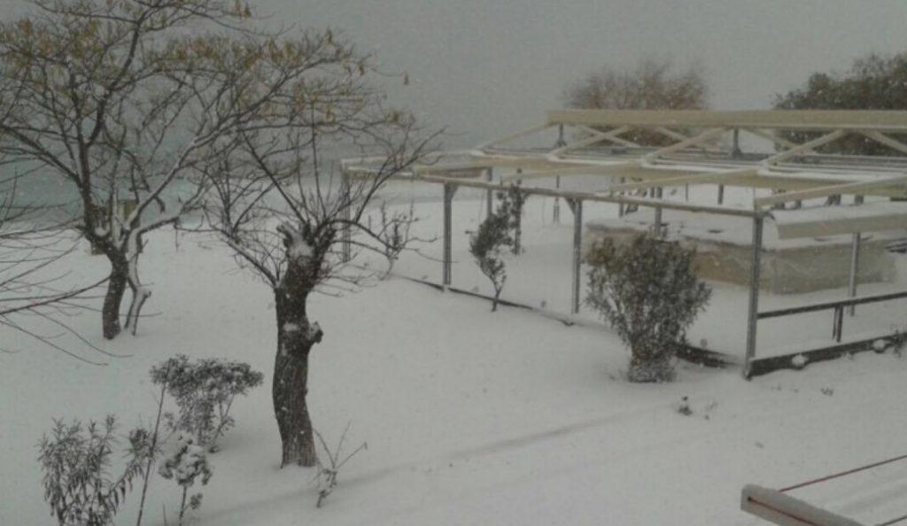 Χιονόπτωση στη Χαλκιδική: Πού χρειάζονται αντιολισθητικές αλυσίδες (vid) | Pagenews.gr
