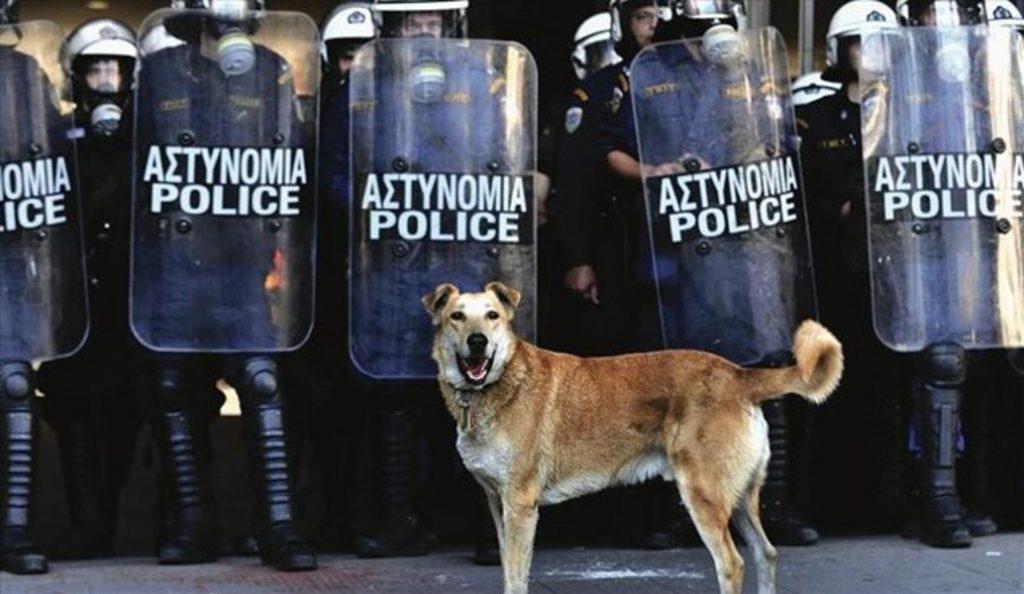 Καλαμάτα: Ξεκινά το 4ο Διεθνές Φεστιβάλ Ντοκιμαντέρ Πελοποννήσου | Pagenews.gr