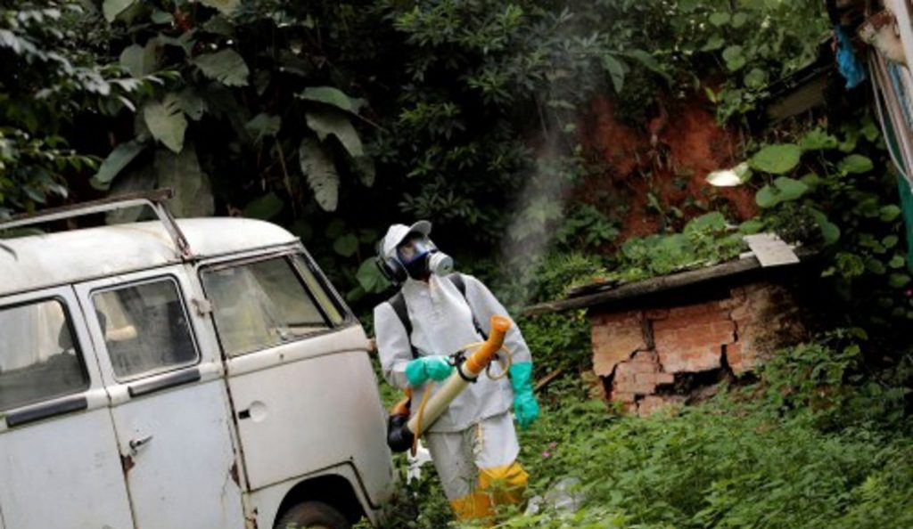 Βραζιλία: Συναγερμός από κρούσματα κίτρινου πυρετού | Pagenews.gr