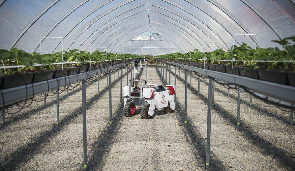 H τεχνητή νοημοσύνη στην υπηρεσία της γεωργίας | Pagenews.gr