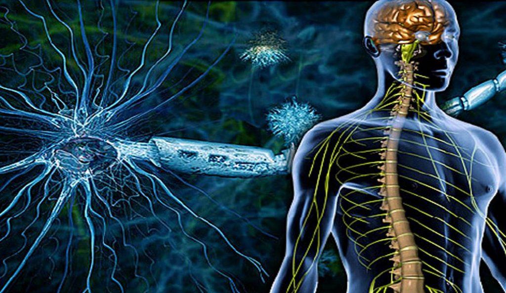 Σκλήρυνση κατά πλάκας: Εντάχθηκε στις μη αναστρέψιμες παθήσεις | Pagenews.gr