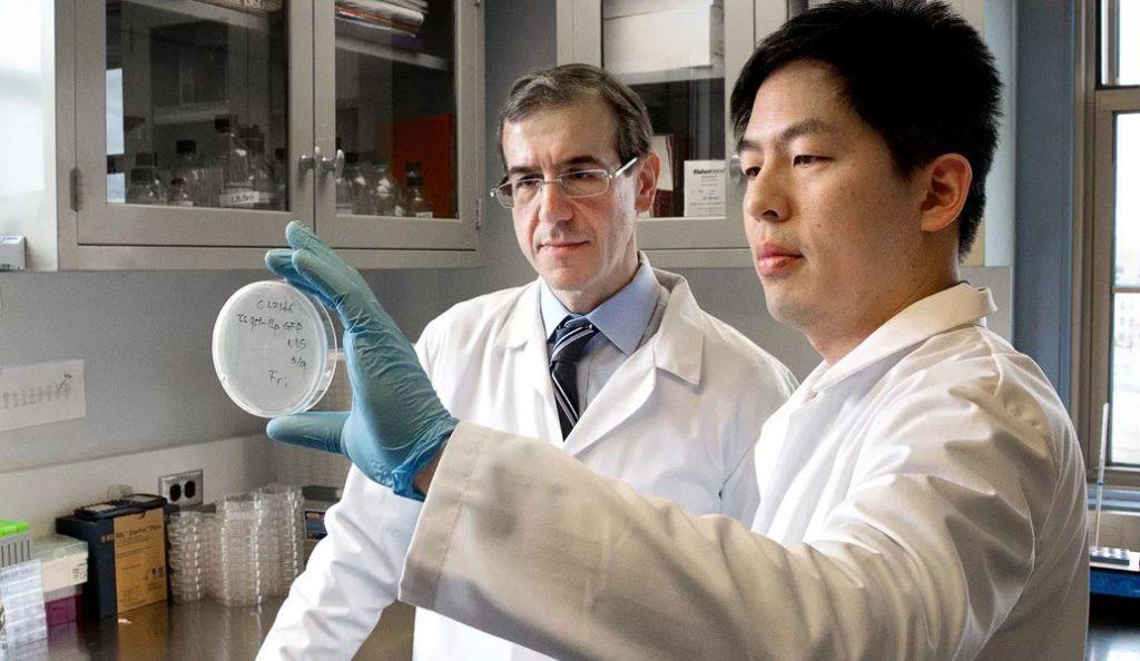 Ελευθέριος Μυλωνάκης: Ο Έλληνας ερευνητής που ανακάλυψε ένα νέο αντιβιοτικό | Pagenews.gr