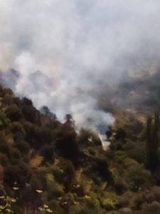 Μεγάλη φωτιά στη Νάξο (pics&vid) | Pagenews.gr