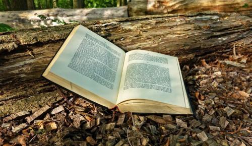 Εβδομάδα παρουσιάσεων στον ΙΑΝΟ με 3 νέα βιβλία | Pagenews.gr