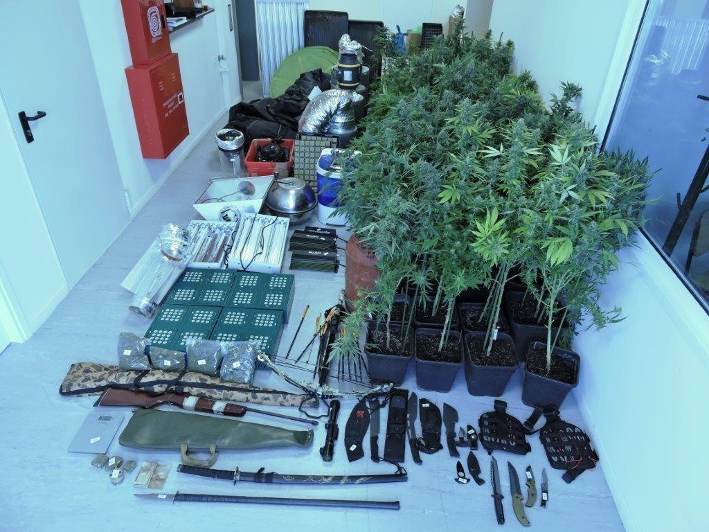 Είχε μετατρέψει το σπίτι του στο Μενίδι σε εργαστήριο κάνναβης (pics)   Pagenews.gr