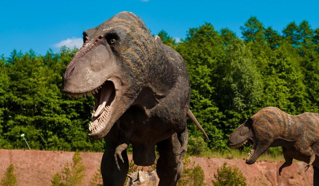 O τυραννόσαυρος είχε δόντια αλλά του «έλειπε» η γλώσσα | Pagenews.gr
