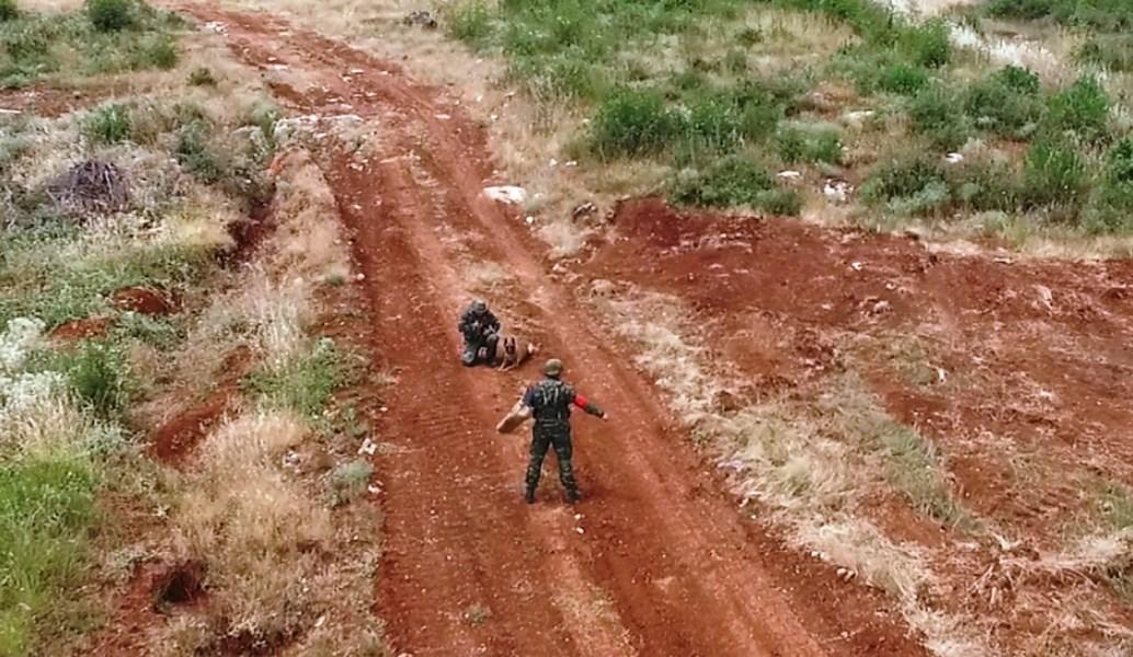 Ένοπλες Δυνάμεις: Για πρώτη φορά άσκηση με στρατιωτικούς σκύλους (pics)   Pagenews.gr