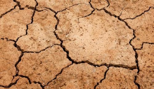 Ινδία: Υποφέρει από τρομερή λειψυδρία | Pagenews.gr