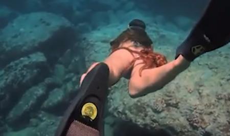 Απίστευτο: Χταπόδι γραπώθηκε από τον γλουτό πανέμορφης κολυμβήτριας (vid) | Pagenews.gr